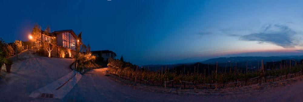 ristorante-nelle-vigne_04.jpg